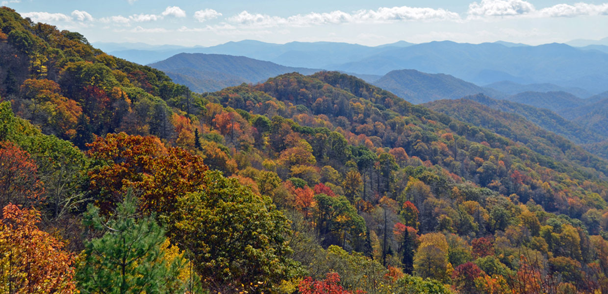 scenic view of the Smokies